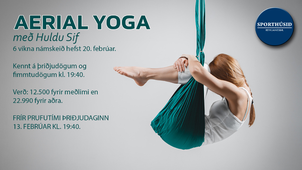 aerial_yoga_2018